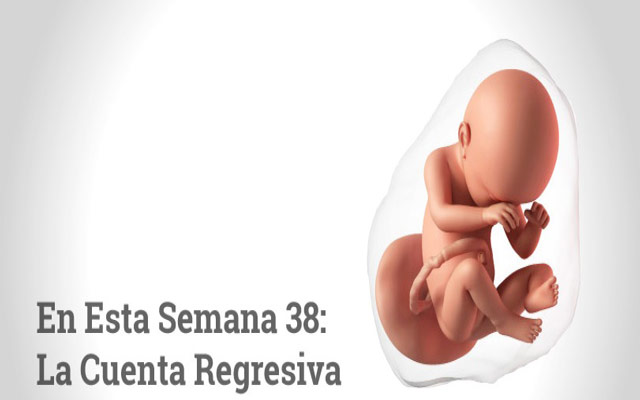 Semana 38 de embarazo