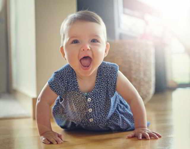 Horarios para bebés de 7 a 8 meses