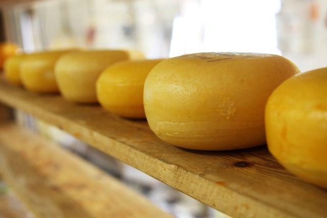 quesos que sí puedes comer