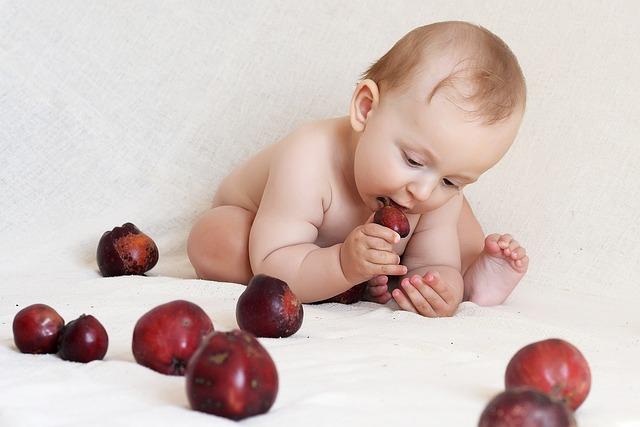 incorporar alimentos sólidos