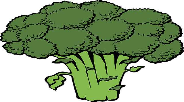 Puré de brócoli para bebés