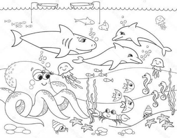 Dibujos de animales del mar para colorear