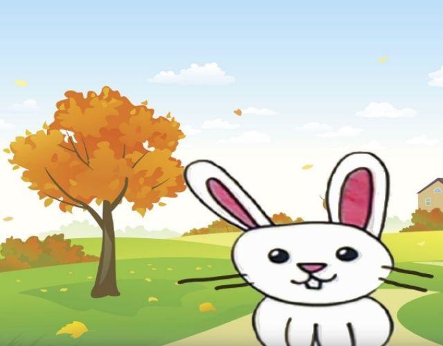 El conejo en la vía