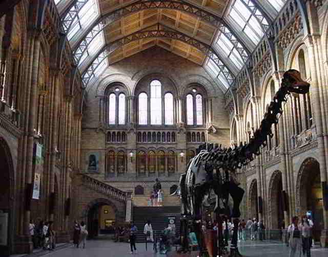Museos interesantes para niños
