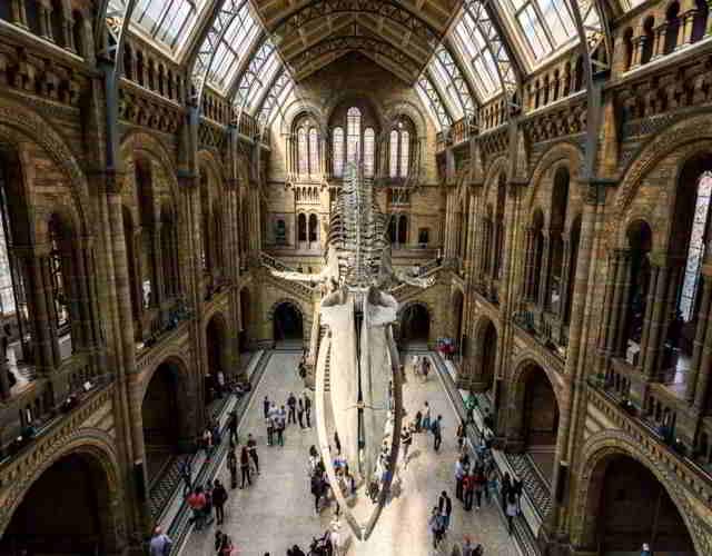 Museos interesantes para niños en Londres 3