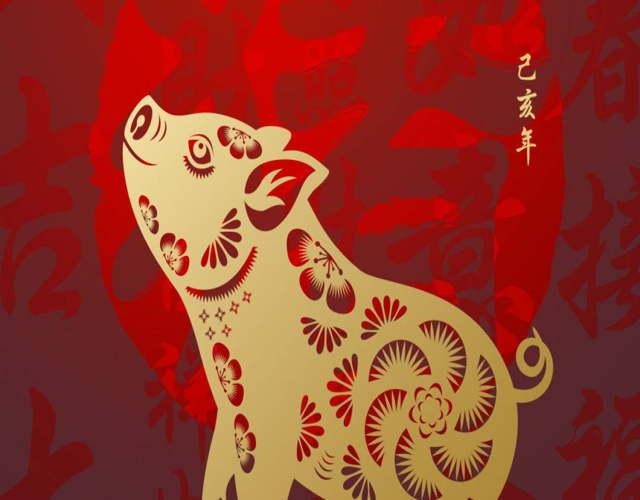 El horóscopo chino del niño Cerdo 2