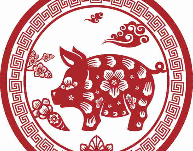 El horóscopo chino del niño Cerdo 3