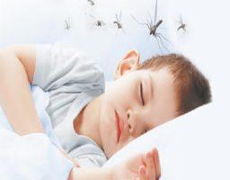 Zika en bebés