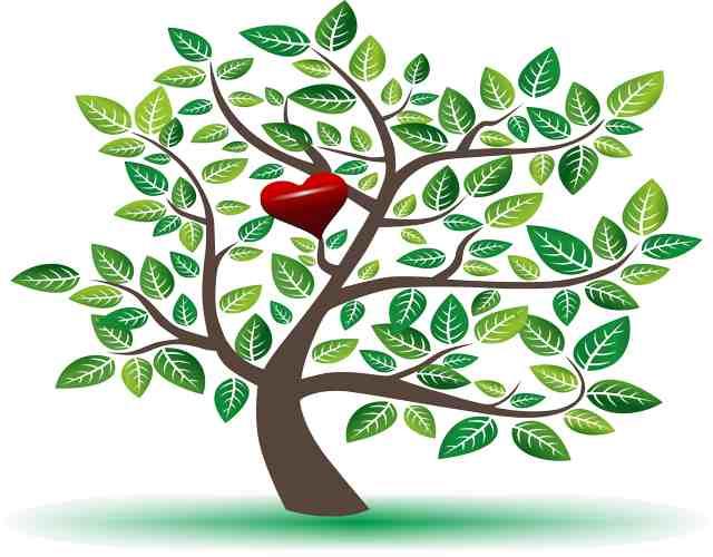 Test del árbol refleja la esencia personal