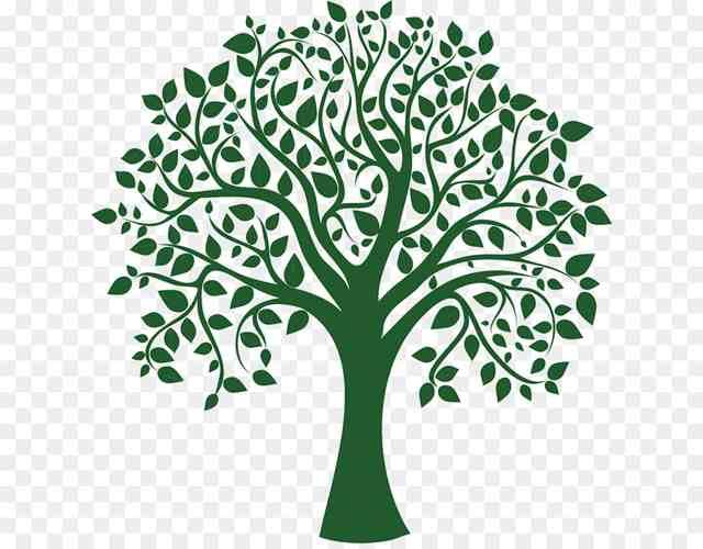 Test del árbol