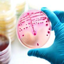 Infección por estreptococo durante el embarazo