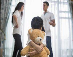 Síndrome de Alienación Parental SAP