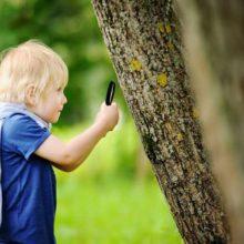 consejos para cuando los niños exploran todo
